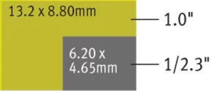 P4P sensor vs P4 and others