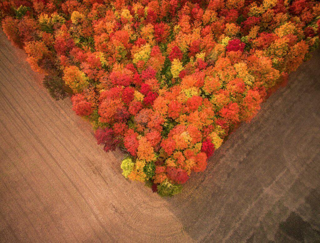Photo: Fall Fields – Inspire 1 X5