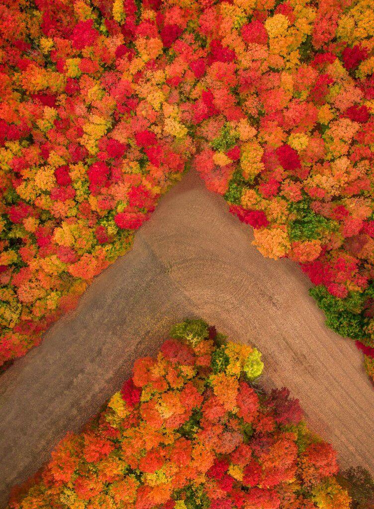 Photo: Autumn Fields – Inspire 1 X5