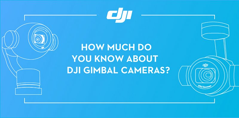 How Much Do You Know about DJI Gimbal Cameras?