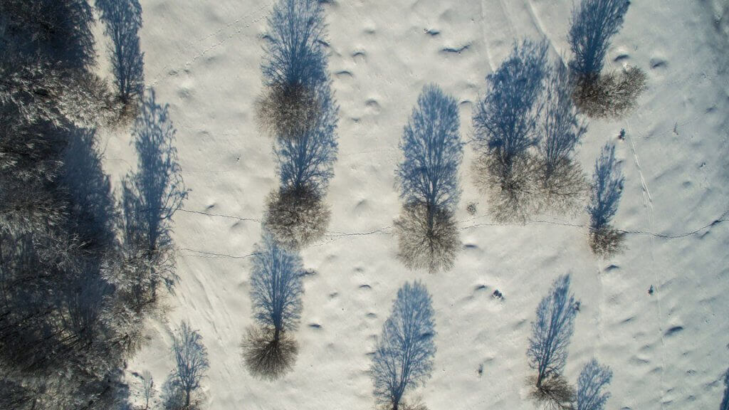 Winter Photography: Shadows