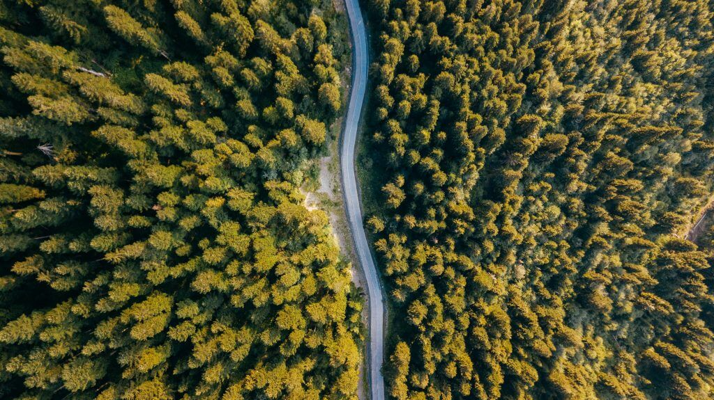 Travels with a Drone: Capturing a Bird's-eye View of the ...